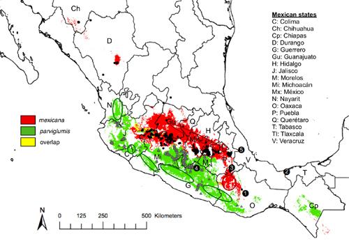 carte du mexique avec emplacement des sites de téosinte